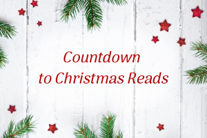 Cozy Up with These Christmas Reads